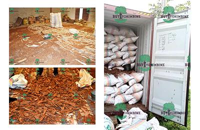 buy yohimbe | From LJS GROUP WAREHOUSE